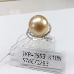 TKR-3653