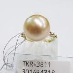 TKR-3811