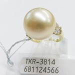 TKR-3814