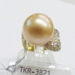 TKR-3821