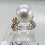 TKR-4000