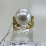 TKR-4021