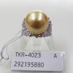 TKR-4023