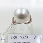 TKR-4029
