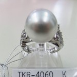 TKR-4060