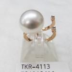 TKR-4113